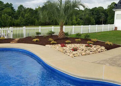 Landscape Design with Palm Tree